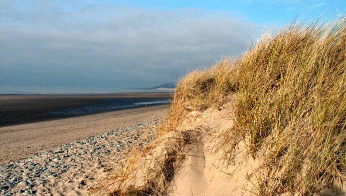 Ynyslas Nature Reserve and Sand Dunes